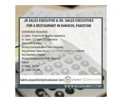 Junior Sales Executives and Senior Sales Executives  Required
