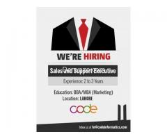 Sales and Support Executive