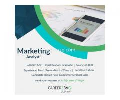 Marketing Analyst Required