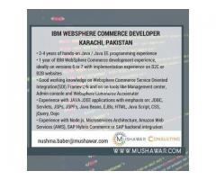 IBM WEBSPHERE COMMERCE DEVELOPER