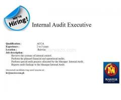 Internal Audit Executive