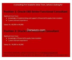 Oracle EBS  Senior Functional Consultant and Functional Consultant