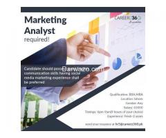 Marketing Analyst