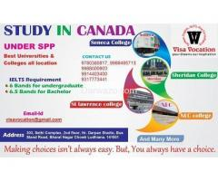 IELTS coaching fee in haibowal kalan
