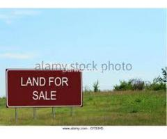 2250 ft² – 10 Marla Residential plot available