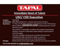 USC/ CSD Executive Required