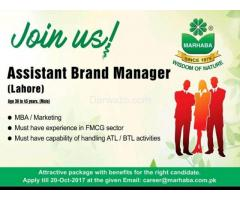Assistant Brand Manager Required