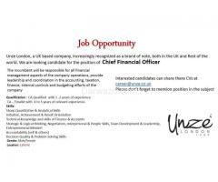 Chief Financial Officer (CFO) Multinational Company
