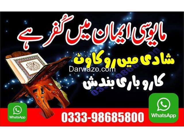 sayed ali raza shah - 1