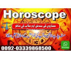 Ali Raza Shah - Image 9/10