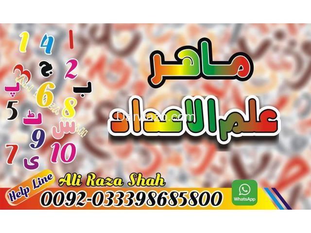 ALI RAZA SHAH - 5