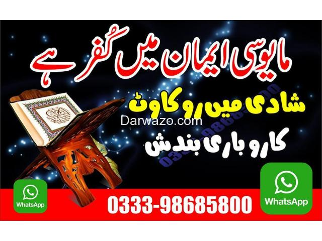 Sayed Ali Raza Shah - 10