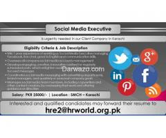 Social Media Executive Required