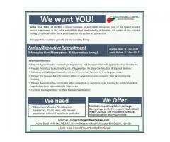 Junior / Executive Recruitment Staff Required