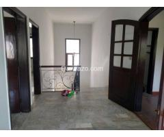Banglow for Rent in DHA Phase 1
