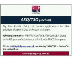 ASO / TSO Required - Jhelum