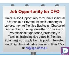 Chief Financial Officer (CFO)